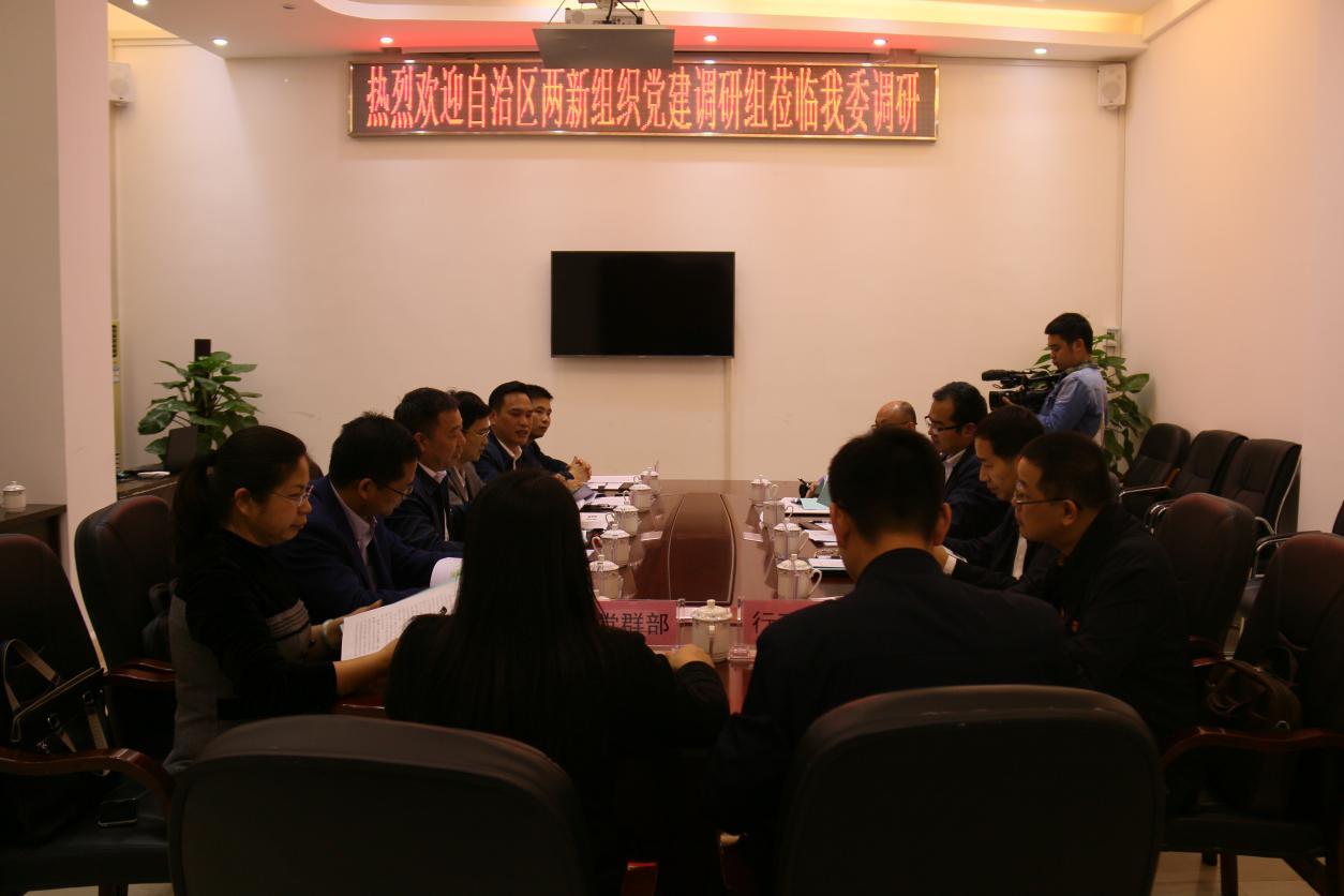 广西自治区调研组深入旺高工业区调研两新组织党建工作