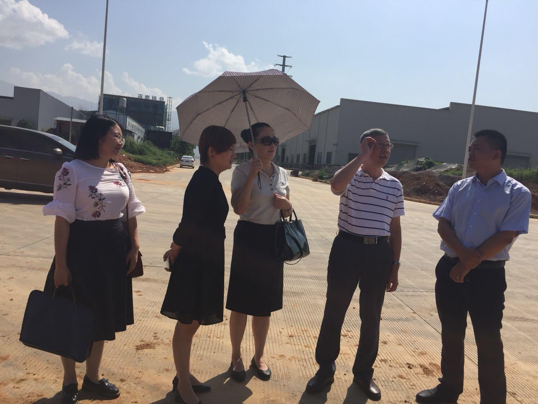自治区招商引资重点项目协调推进小组到旺高工业区开展实地调研